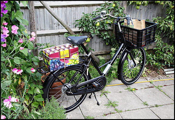 Picture of Workcycles FR8 bicycle
